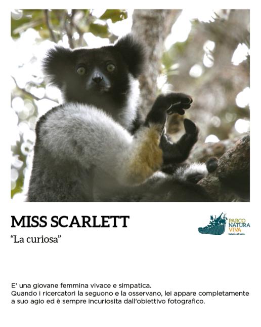 iniziative adozione animali parco natura viva
