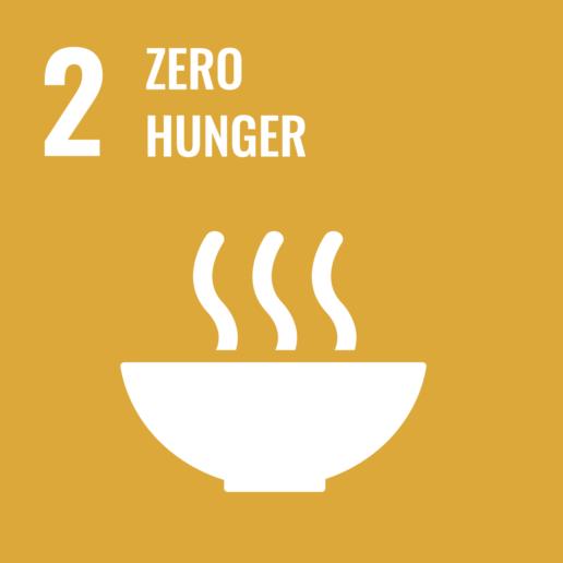 SDGs 2 - Zero Hunger - Sustainable Development Goals