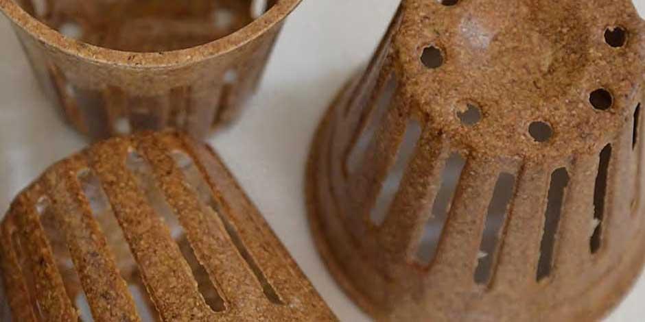 vipot vasi biodegradabili